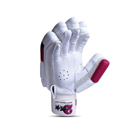 HS 2 Star Batting Gloves 2