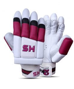 HS 2 Star Batting Gloves Pair