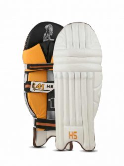 HS 41 - Batting Pads Pair