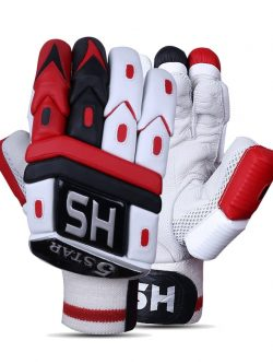 HS 5 Star Batting Gloves Pair