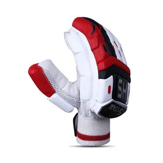HS 5 Star Batting Gloves - Cricket