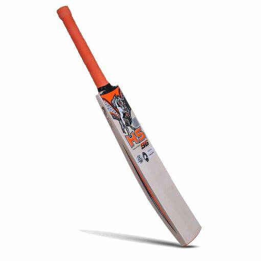 HS 96 - English Willow Bat 2
