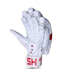 HS Core 5 Batting Gloves