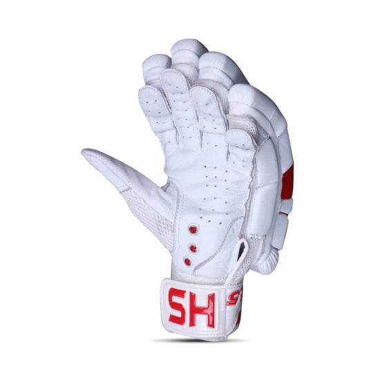 HS Core 5 Batting Gloves
