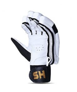HS T20 Batting Gloves