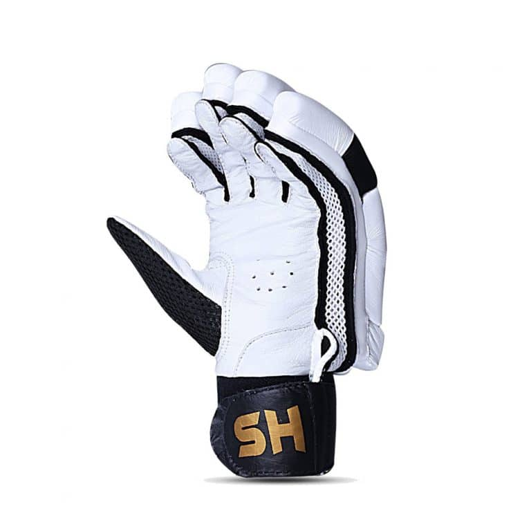 HS T20 Batting Gloves
