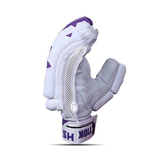 HS Y10K Batting Gloves for Cricket